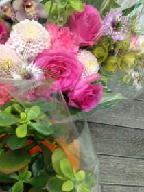お花をいただきました。春らしい色ですね(^-^)